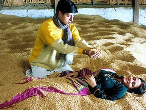 মাত্রুভূমি (২০০৩)পরিচালক-মনীশ ঝা। নারীশূন্য ভূমিতে একমাত্র নারীর প্রতি পাঁচ পুরুষের অধিকার কায়েমের চেষ্টা, গণধর্ষণ, শিশুকন্যার জন্ম এবং অবশেষে পিতৃত্বের অধিকারের লড়াইয়ে্ পরস্পরকে হত্যা। ভারতীয় চলচ্চিত্রের ইতিহাসে নারী বঞ্চনার অন্যতম চিত্রায়ন। নারীশূন্য পৃথিবীর ভয়াবহতাকে তুলে ধরে এই ছবি।ভেনিস চলচ্চিত্র উংসব সহ বহু আন্তর্জাতিক চলচ্চিত্র উত্সবে সমাদৃত।