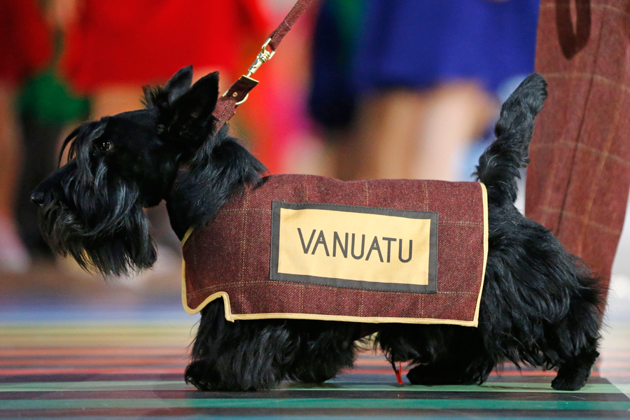 A Scottish Terrier wearing a vest with the team name of Vanuatu is led around the arena ahead of the team during the opening ceremony