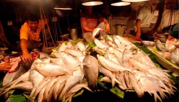 দাম কমাতে এবার কম দামে মাছ বিক্রি করবে রাজ্য সরকার