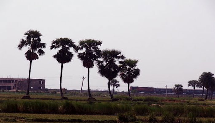ইন্দ্রনীল সেনের প্রতিশ্রুতি অট্টহাসকে পর্যটন মানচিত্র তুলে ধরবে সরকার