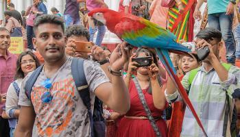 শোভাবাজার রাজবাড়ির পুজোয় এবার বিশেষ আকর্ষণ পাখি প্রদর্শনী
