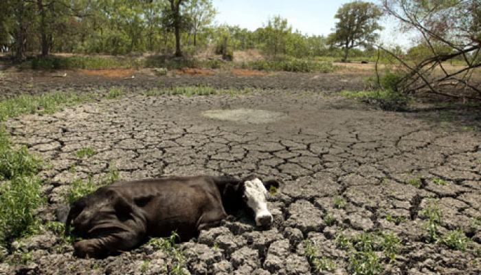কম বৃষ্টিপাতের জেরে ২০১৪ সাল হতে চলেছে দেশের খরার বছর