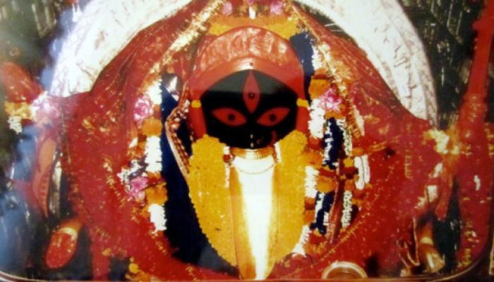 দক্ষিণেশ্বর, কালীঘাট, আদ্যাপীঠে শক্তির আরাধনা, আলোর উত্সবে মাতল রাজ্য