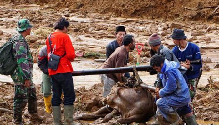 ইন্দোনেশিয়ায় ভয়াবহ ধসে মৃত অন্তত ১৮, ধূলিসাৎ শতাধিক বাড়ি