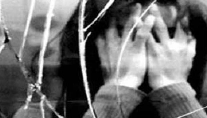 কিশোরী পরিচারিকাকে যৌন নির্যাতনের অভিযোগে গ্রেফতার মামা ভাগ্নে