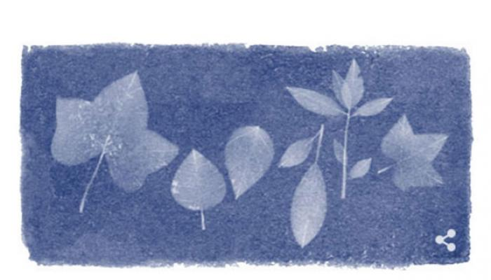 ব্রিটিশ বোটানিস্ট অ্যানা অ্যাটকিংসকে গুগলের ডুডলিং শ্রদ্ধার্ঘ