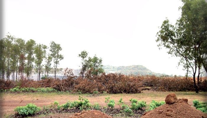 নদী দখল করে আসানসোলে বাড়ি তৈরির দাদাগিরি জমি মাফিয়া, প্রোমোটারদের