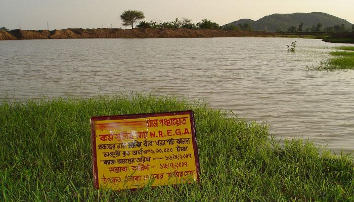 টাকা বরাদ্দ হয়েছে পুকুর খনন প্রকল্পে, ১ হাজার ৪৬০ জন শ্রমিক কাজ করেছেন, অথচ পুকুর আছে পুকুরেই