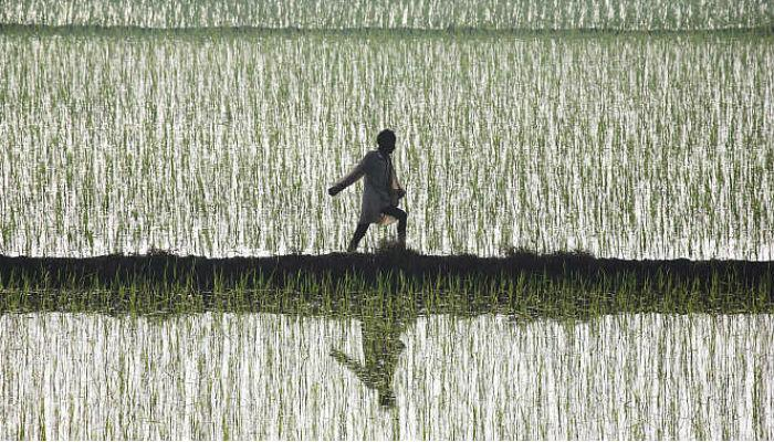 পিছু হটল কেন্দ্র, জমি বিল ইস্যুতে নতুন অর্ডিন্যান্স নয়, মন কি বাতে বললেন প্রধানমন্ত্রী
