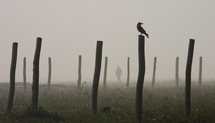 দক্ষিণে নিম্নচাপ, উত্তরে আসতে সময় লাগবে কনকনে শীতের
