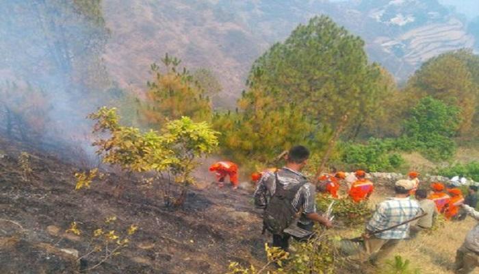 দাবানল বিধ্বস্ত উত্তরাখণ্ড, পরিস্থিতি মোকাবিলায় নামল জাতীয় বিপর্যয় মোকাবিলা বাহিনী