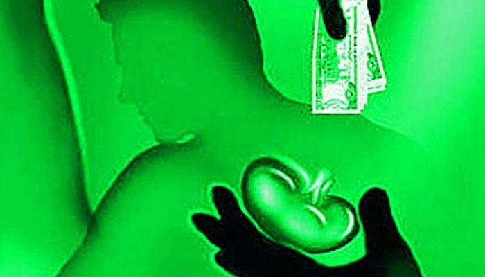 কলকাতা থেকে গ্রেফতার কিডনি পাচারচক্রের চাঁই টি রাজকুমার রাও