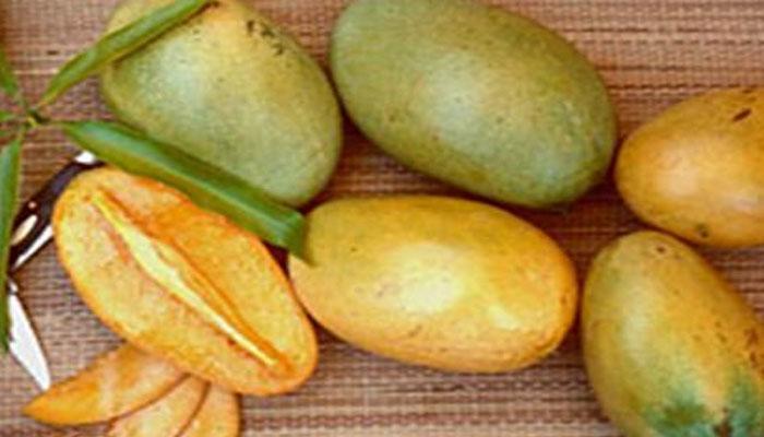 দুবাই-হংকংয়ে দেদার বিক্রি হচ্ছে বাঁকুড়ার আম
