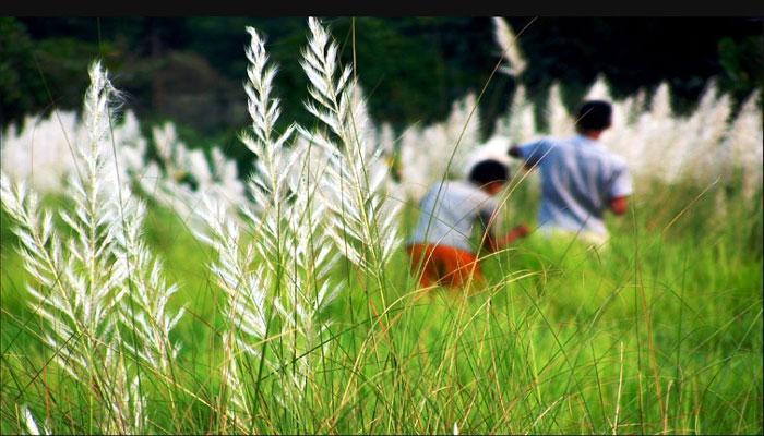 বাড়ল পুজোর ছুটি, পঞ্চমী থেকে টানা লক্ষ্মীপুজো পর্যন্ত