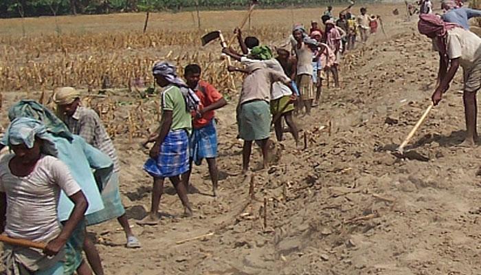 একশো দিনের কাজে বড়সড় দুর্নীতির অভিযোগ উত্তর দিনাজপুরের করণদিঘিতে