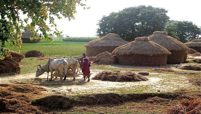 নির্মল জেলার বাস্তব ছবিটা বড়ই লজ্জার!