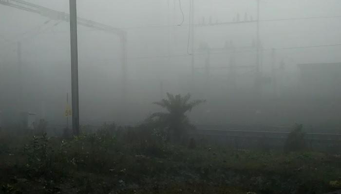 দশে নামল পারদ, কুয়াশায় দুর্ভোগ দূরপাল্লার ট্রেনে