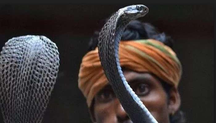 ঝোলায়-গলায়-হাতে সাপ, স্কুটি চেপে বনগাঁতে লুঠ চালাচ্ছে সাপুড়ে