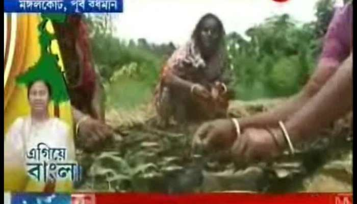 Egiye Bangla : Katwa Women Are Earning Money By Selling Saplings