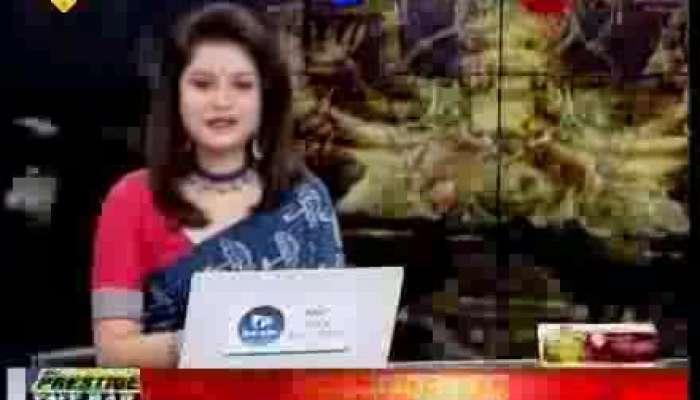 Pujo Parikrama 2018 : Naktala Udyan Sangha